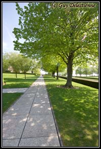Allée (Henri-Chapelle, Hombourg, 2007)